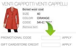 Luisaviaroma Promo Code Section Snapshot