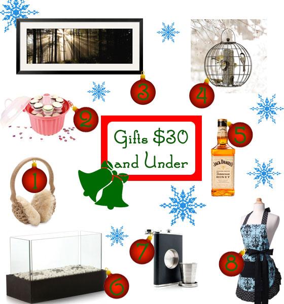 Gifts Ideas Under $30