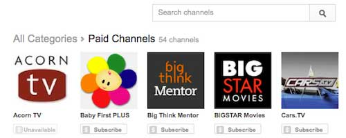 Youtube paid channels image